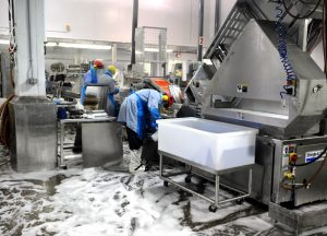 cleaning food processing equipment